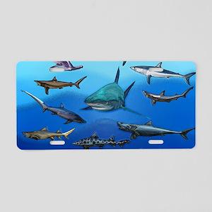 Shark Gathering Aluminum License Plate