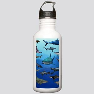 Shark Gathering Stainless Water Bottle 1.0L