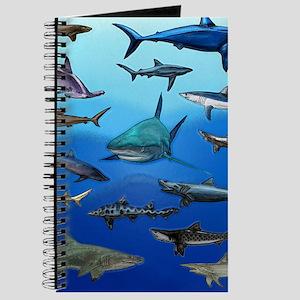 Shark Gathering Journal