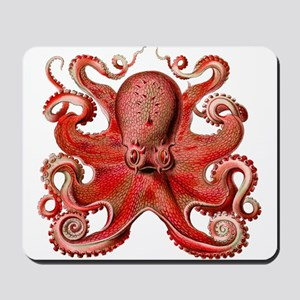 Red Octopus Mousepad