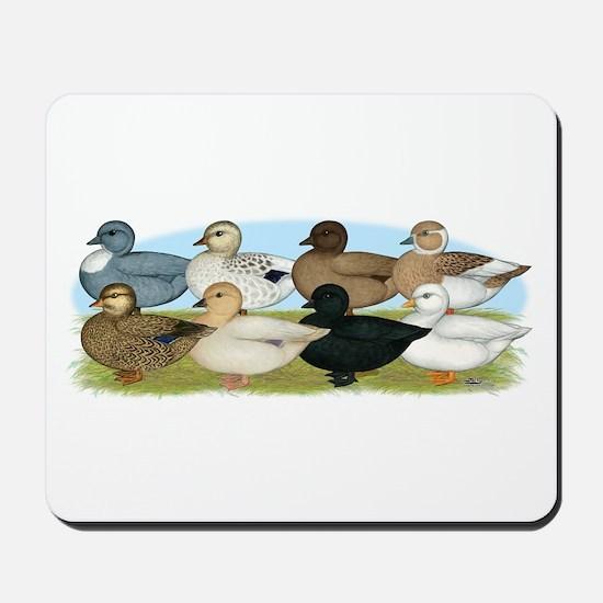 Eight Call Ducks Mousepad