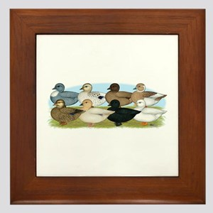Eight Call Ducks Framed Tile