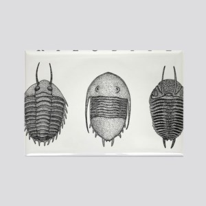 Trilobites Rectangle Magnet