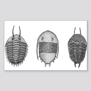 Trilobites Sticker (Rectangle)