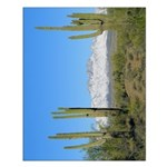 Snowy Four Peaks no Border Small Poster