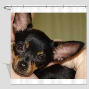 Munchkin Chihuahua Shower Curtain
