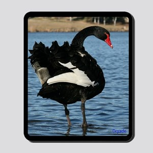 Moment with a Black Swan Mousepad