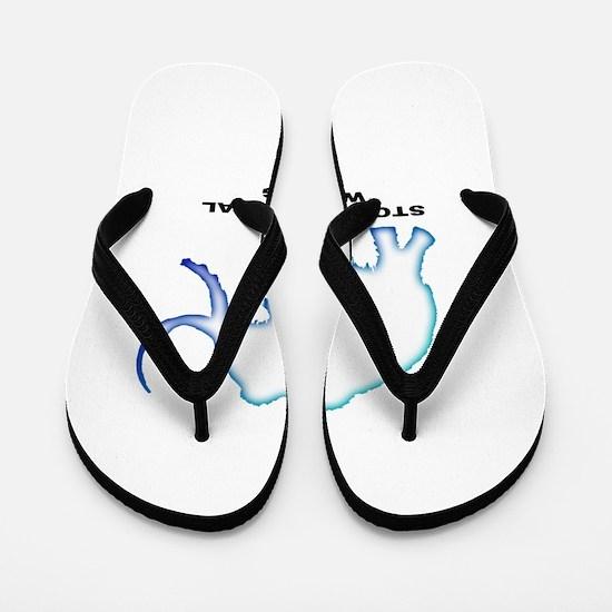 Stop the global warming Flip Flops