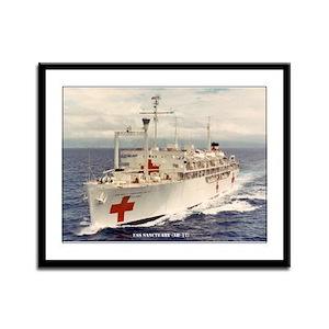 USS SANCTUARY Framed Panel Print