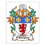 O'Haughey Coat of Arms Small Poster