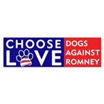 "Official DAR ""CHOOSE LOVE"" Sticker"