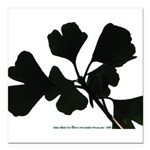 Ginko Tree Leaves Square Car Magnet 3