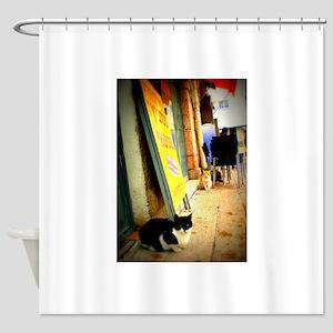 Agrippas Cat 08 Lomo Shower Curtain