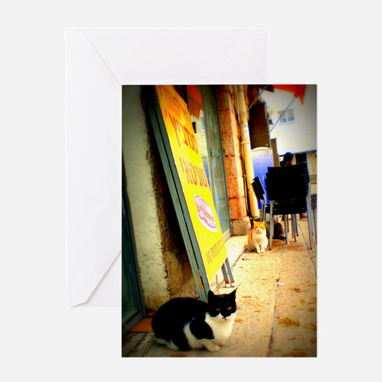 Agrippas Cat 08 Lomo Greeting Card
