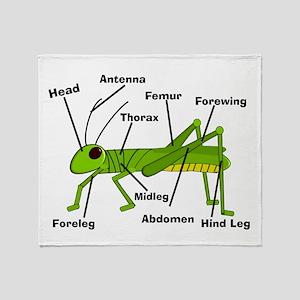 Grasshopper Anatomy Gails Throw Blanket