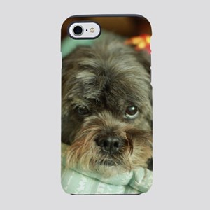 indoor Kona close up Lhasa typ iPhone 7 Tough Case