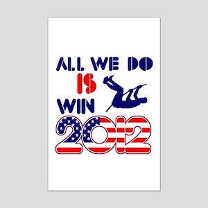 USA Pole Vault Designs Mini Poster Print