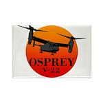 OSPREY Rectangle Magnet (10 pack)