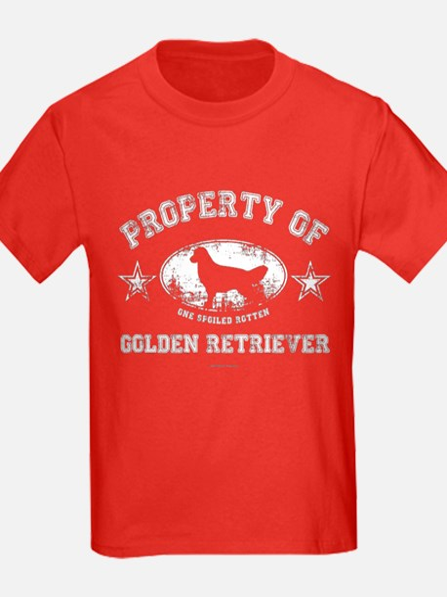 Golden Retriever T