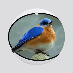 Bluebird in Oval Frame Ornament (Round)