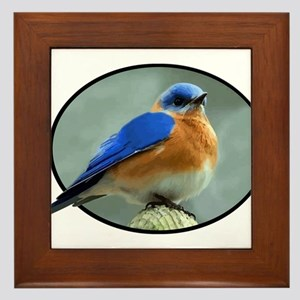Bluebird in Oval Frame Framed Tile