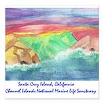 Santa Cruz Island cinmls product Square Car Ma