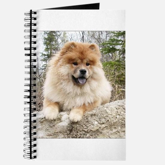 KippsDogs Journal