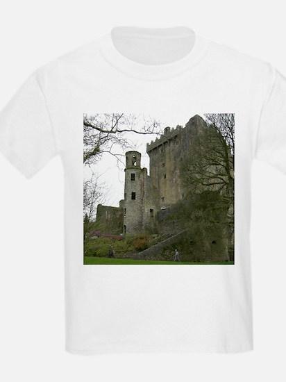 Scenic Ireland Blarney Castle Kids T-Shirt