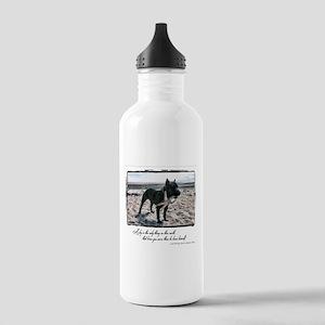 #TEAMLLOYD Stainless Water Bottle 1.0L