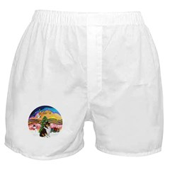 XMusic2-Collie (Tri) Boxer Shorts