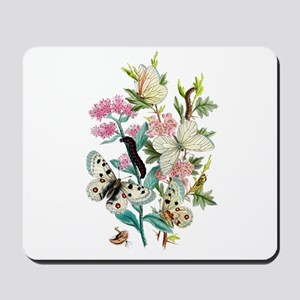 Butterflies of Summer Mousepad