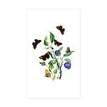 Butterflies of Summer Sticker (Rectangle 10 pk)