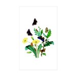Butterflies of Summer Sticker (Rectangle 10 pk)