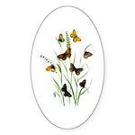 Butterflies of Summer Sticker (Oval 10 pk)