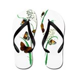 Butterflies of Summer Flip Flops