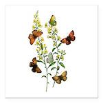 Butterflies of Summer Square Car Magnet 3