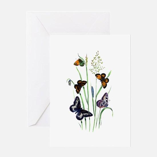 Butterflies of Summer Greeting Card