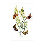 Butterflies of Summer Sticker (Rectangle 50 pk)