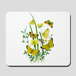 Butterflies of Summer Mousepad