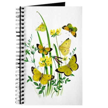 Butterflies of Summer Journal