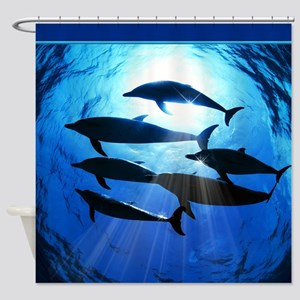 Porpoises in the Ocean with Sun Rays Streaming Dow