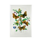 Butterflies of Summer Rectangle Magnet (100 pack)