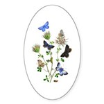 Butterflies of Summer Sticker (Oval 50 pk)