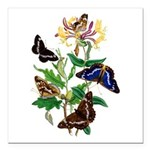 Butterflies and Honeysuc Square Car Magnet 3