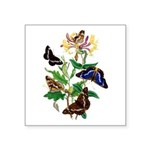 Butterflies and Honeysuckle Square Sticker 3