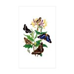 Butterflies and Honeysuc Sticker (Rectangle 50 pk)