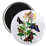 Butterflies and Honeysuckle Magnet