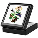 Butterflies and Honeysuckle Keepsake Box