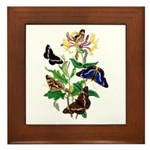 Butterflies and Honeysuckle Framed Tile