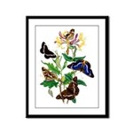 Butterflies and Honeysuckle Framed Panel Print